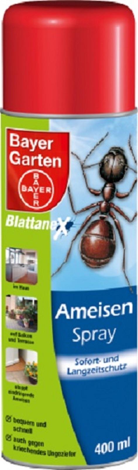 Bayer Ameisenspray 400 ml