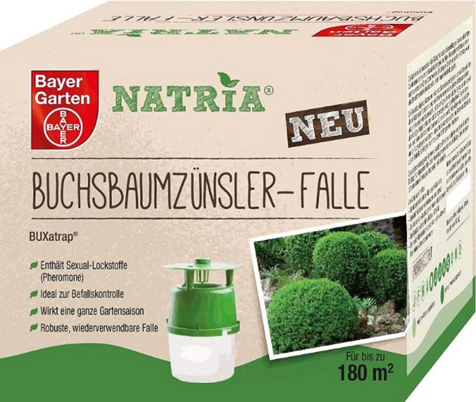 Bayer Buchsbaumzünzlerfalle