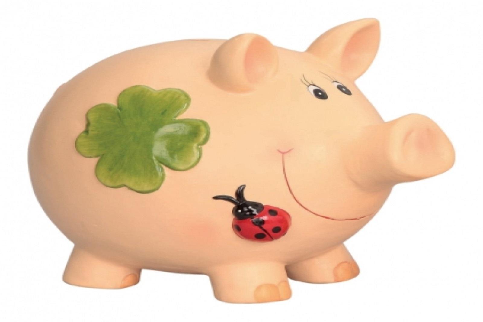 Glueckssparschwein Sparschwein