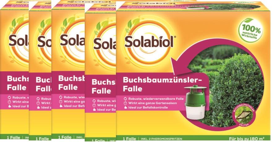 Solabiol Buchsbaumzünslerfalle 5 Stück