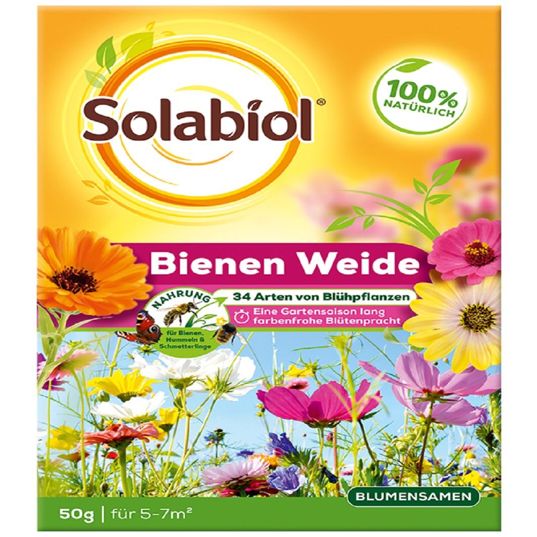 Solabiol Bienenweide 50 g Samen Blumensamen